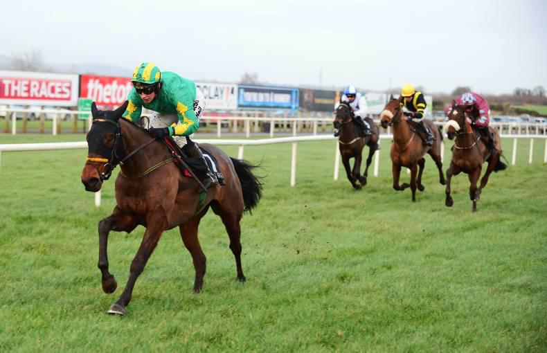 BREEDING INSIGHTS: She's A Star is a Well Chosen name
