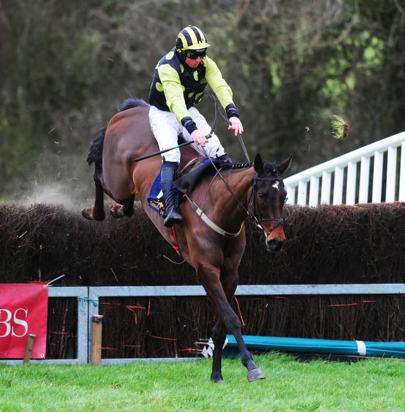FUTURE STARS: Point-to-pointers full of promise
