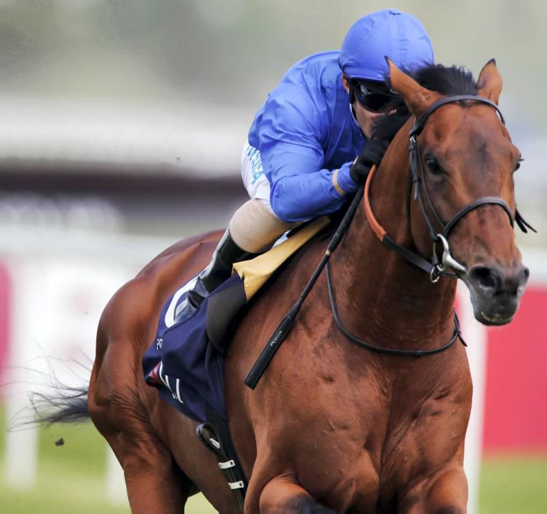SIRE REVIEW: FARHH : Standing at Dalham Hall Stud