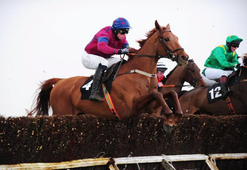 PUNCHESTOWN SUNDAY: Smooth success for Hardline