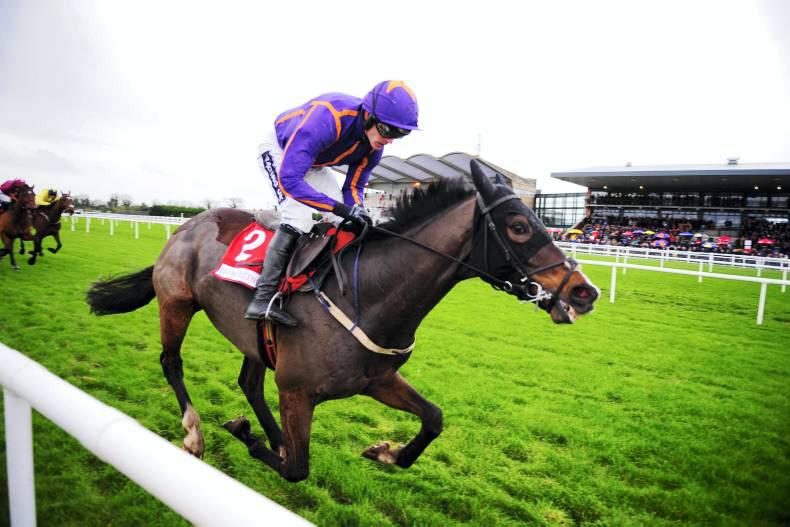 """Willie Mullins: """"Arctic Fire should be Champion Hurdle favourite"""""""