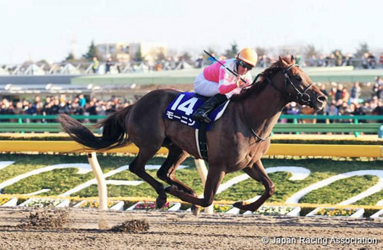 TOKYO: Moanin sets new record in Tokyo February Stakes