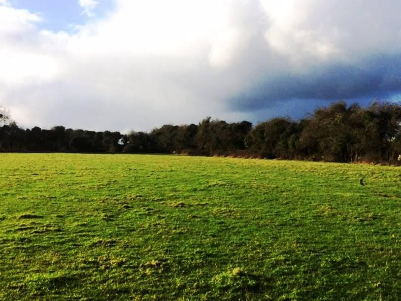 PROPERTY: Residential farm on Capital's doorstep