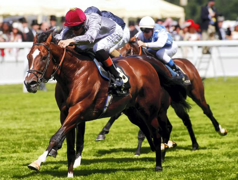 SIRE REVIEW: Toronado : Standing at National Stud