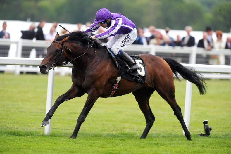 SIRE REVIEWS: Fame And Glory : Standing at Grange Stud