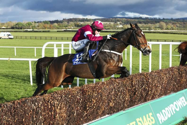 PEDIGREE NOTES: The weekend's Irish and UK blacktype winners