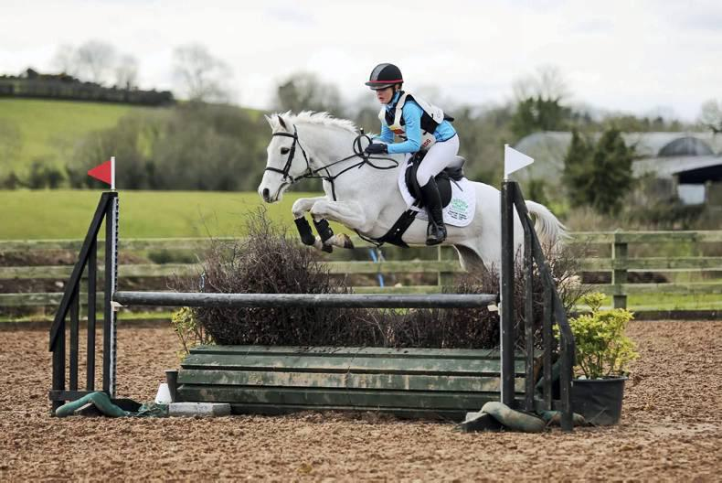 Halliday and Augusta take open horse victory