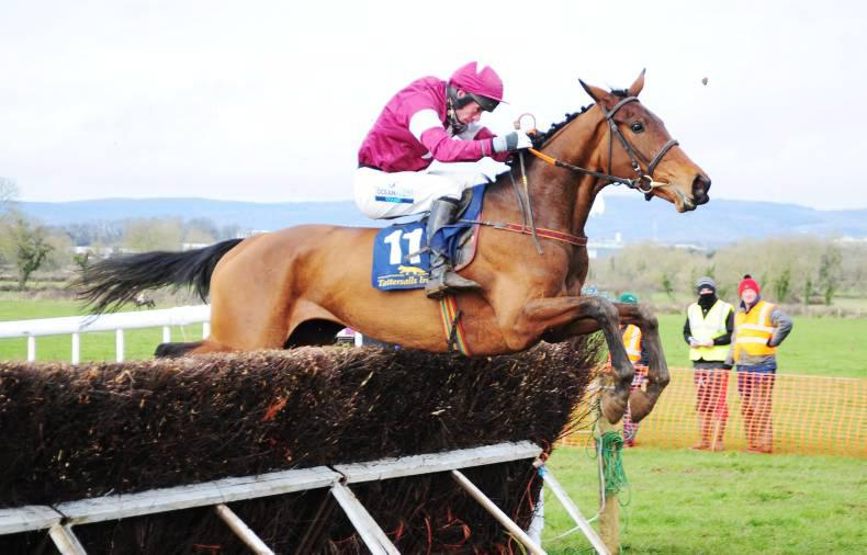 MARGIE MCLOONE: Good day for Total Recall et al at Naas