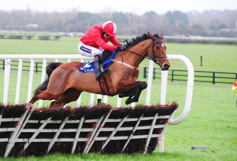 AMERICA: Dreaming about the Cheltenham horses who got away