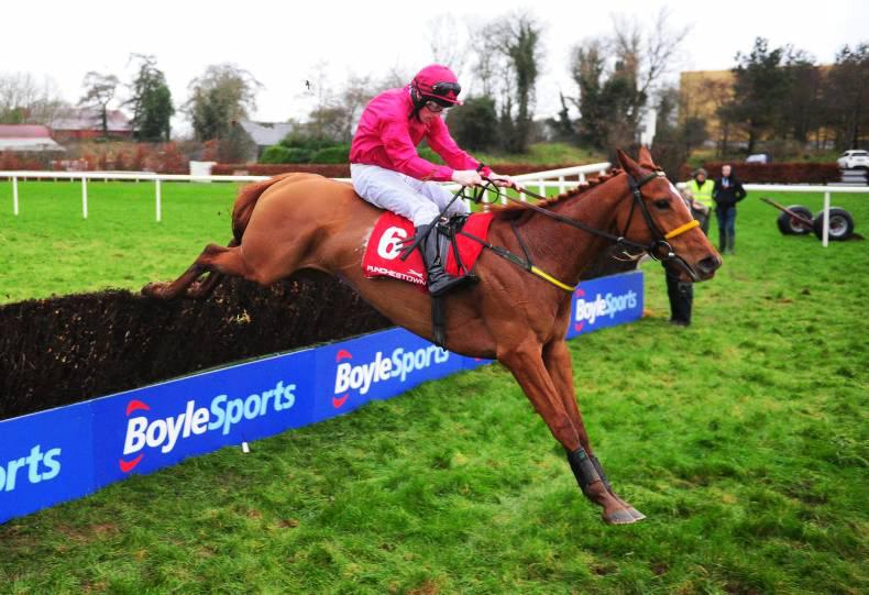 PEDIGREE NOTES: Irish and UK NH blacktype winners the weekend before Cheltenham