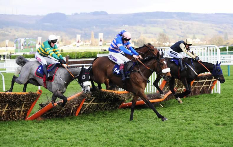 CHELTENHAM WEDNESDAY: Diego comes out on top of dramatic finish