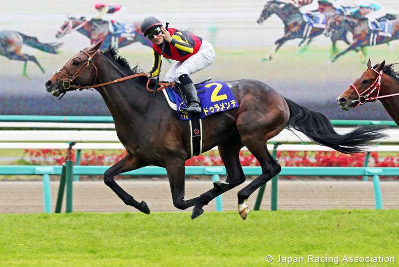 JAPAN: Japanese horses in Dubai World Cup