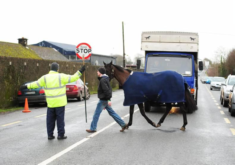 HORSE SENSE:  Your checklist before heading out on the road