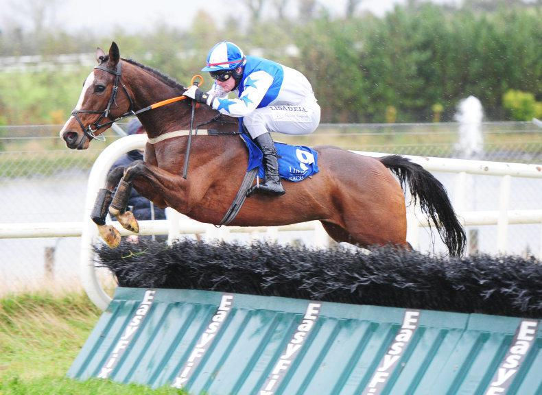 FAIRYHOUSE SUNDAY: Jer's Girl has it all to prove