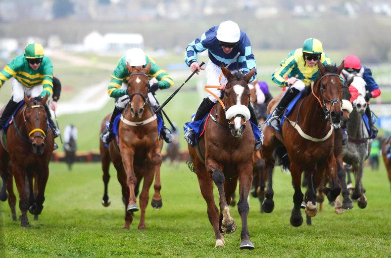 DONN MCCLEAN: Some week at Cheltenham
