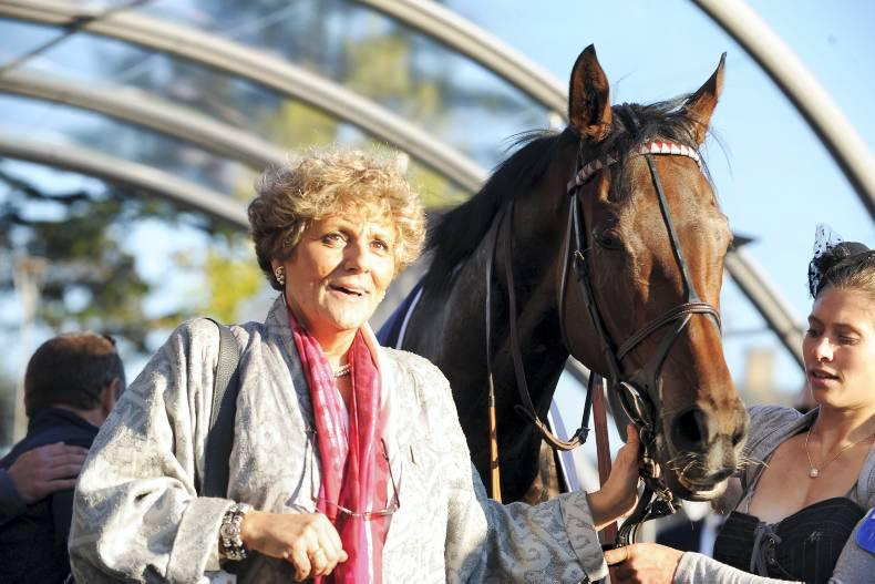 FRANCE: Cirrus Des Aigles bows out from racing