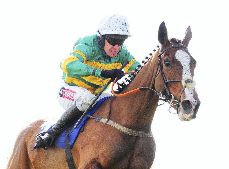 DONN McCLEAN: Five wins for Geraghty