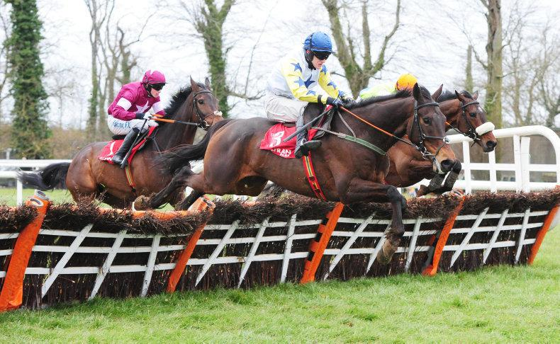 Horses To Follow: This weekend's entries