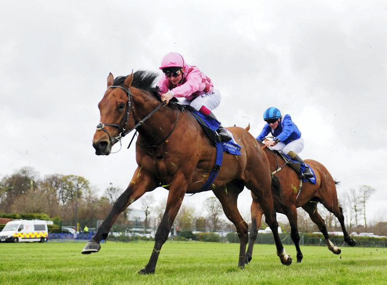 CURRAGH SUNDAY: Endless Drama promised at the Curragh