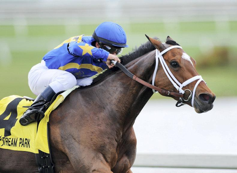 AMERICA: Photo Call eases her way to victory