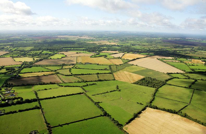 PROPERTY: Prime farmland sold at auction