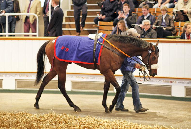 Foundation back in Thursday's Craven Stakes