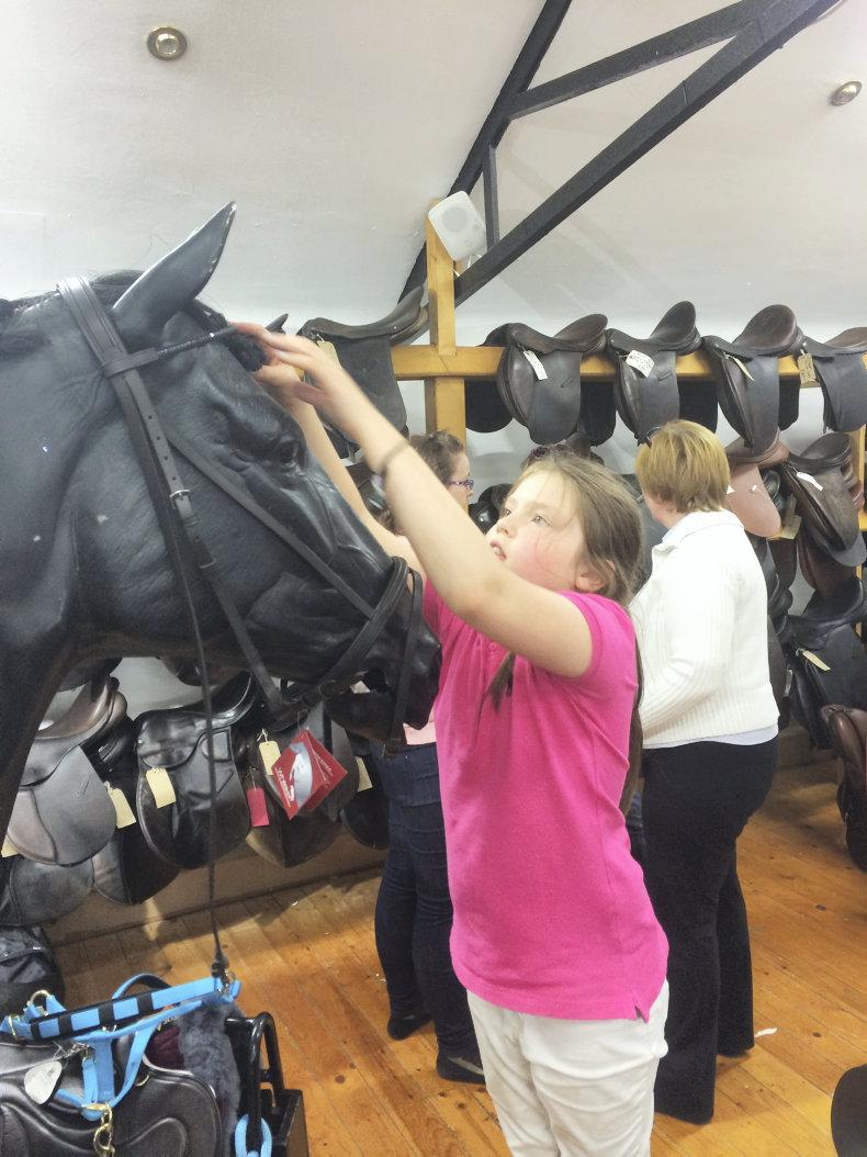 International award for Holmestead Saddlery