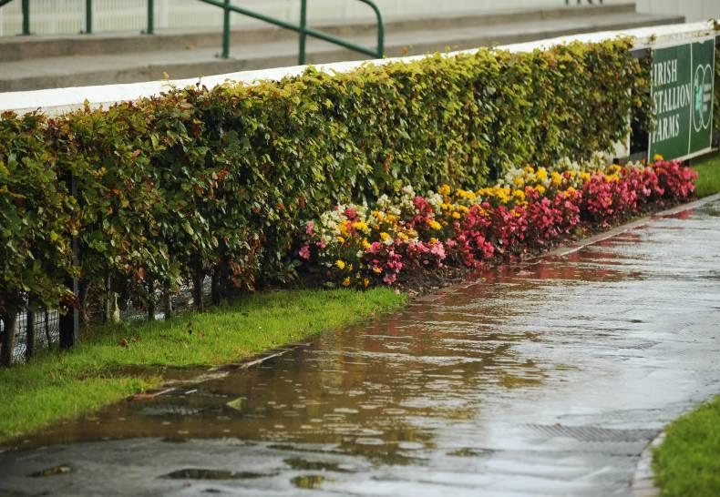 All-weather tracks to the rescue in Ireland and Britain