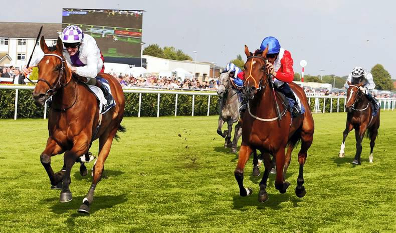 PEDIGREE NOTES: The week's flat stakes winners - 11th to 17th April