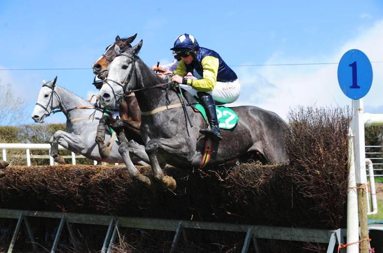 LOUGHBRICKLAND SATURDAY: Stowaway Forever a class above the rest