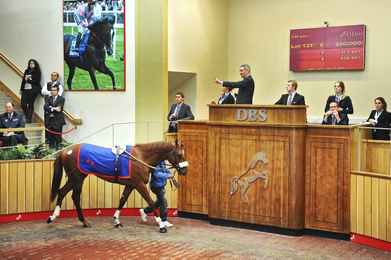 VIDEO: Watch Goffs UK Breeze-Up Sale LIVE