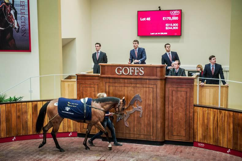 GOFFS UK BREEZE-UP SALE: Kodiac rules on day of highs and lows