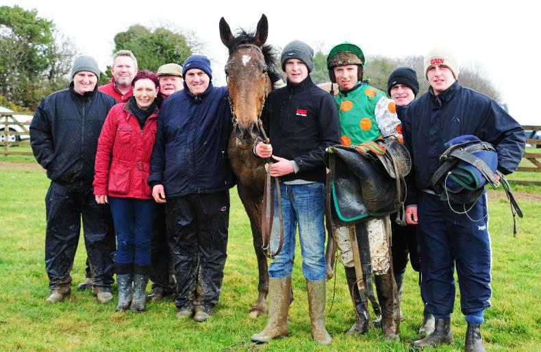 MARGIE MCLOONE: Two winners for Ballinamona Wish offspring