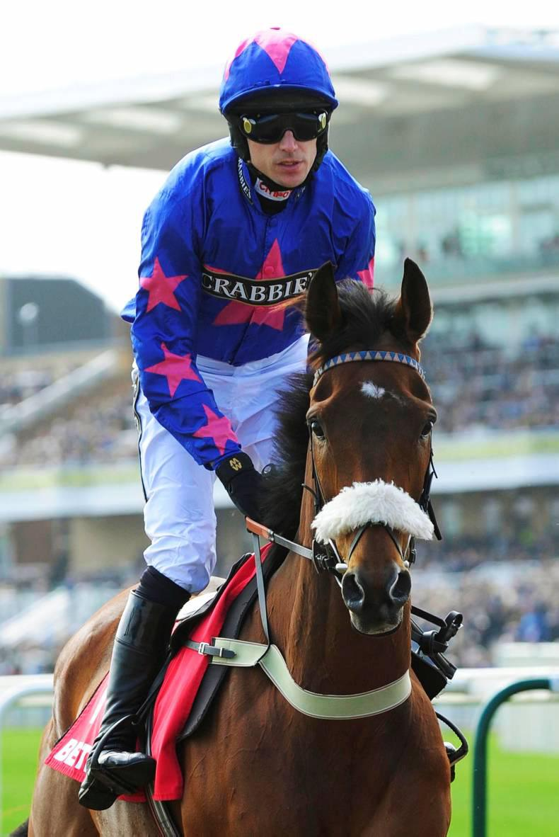 THE FINAL SHOWDOWN: Cue Card, the Don and Vautour