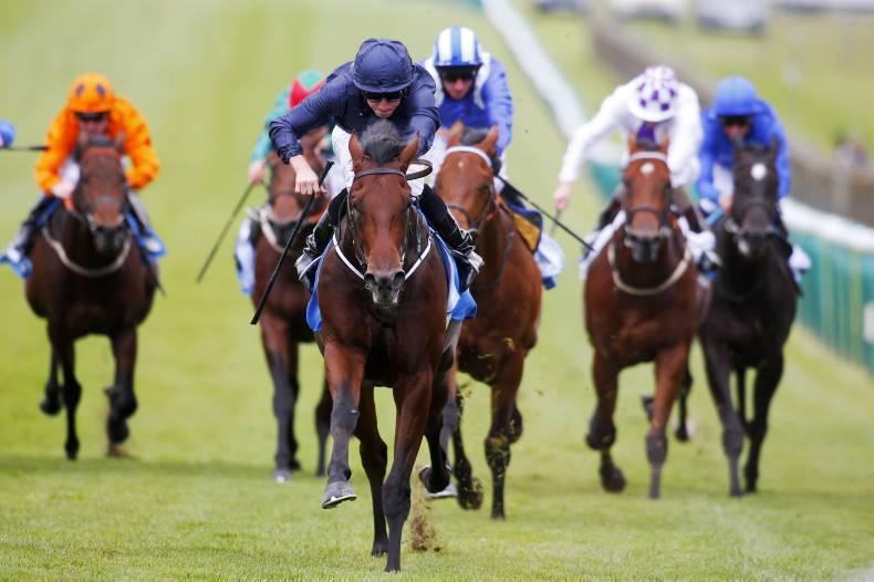 Air Force Blue stars in 17 on course for 2000 Guineas