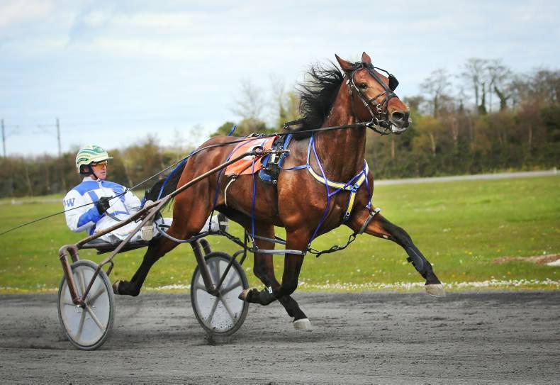 HARNESS RACING: Rock looks ready to roll on