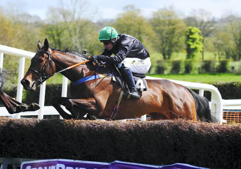 GOFFS PUNCHESTOWN SALE: Connors' Getabird tops and joins Mullins team