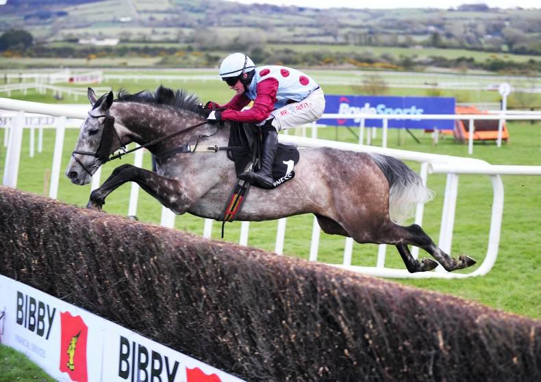 PUNCHESTOWN WEDNESDAY: Improving Irish Cavalier comes good