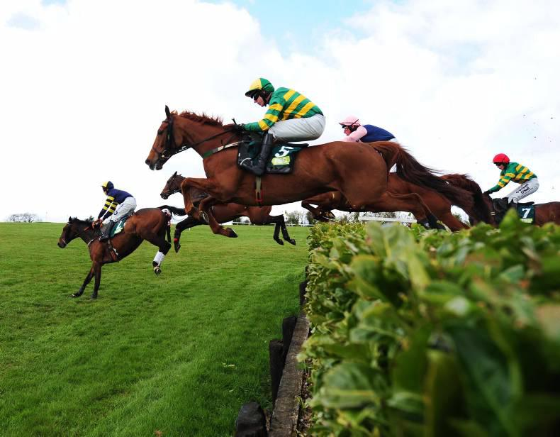 PUNCHESTOWN THURSDAY: Easy for Quantitative who doesn't miss a beat