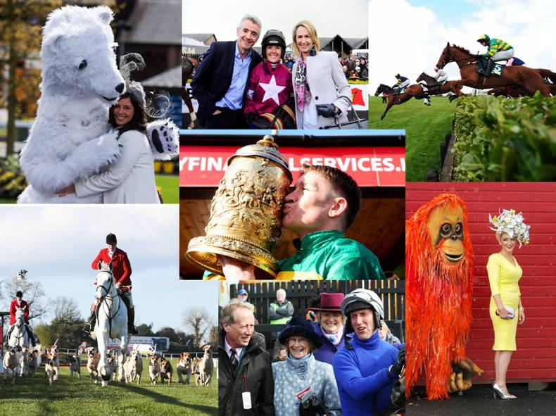 Check out what's inside The Irish Field and Irish Horse  World this week!
