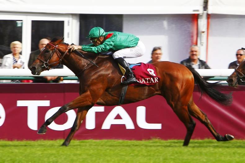 FRANCE: Dariyan looks perfect for Ganay success