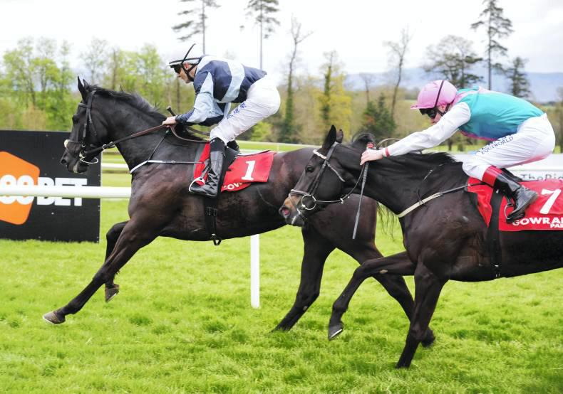 GOWRAN PARK SUNDAY: Bocca bounces back