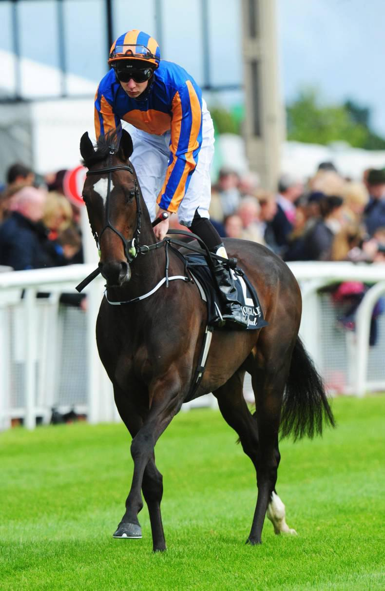 Could Ballydoyle win the Derby?