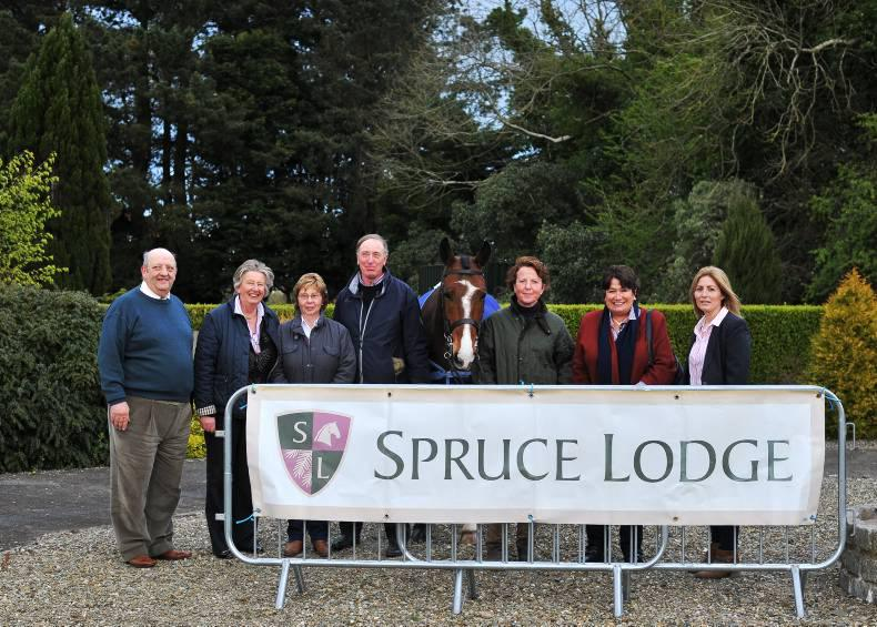 Spruce Lodge to host 10th IDHBA Show