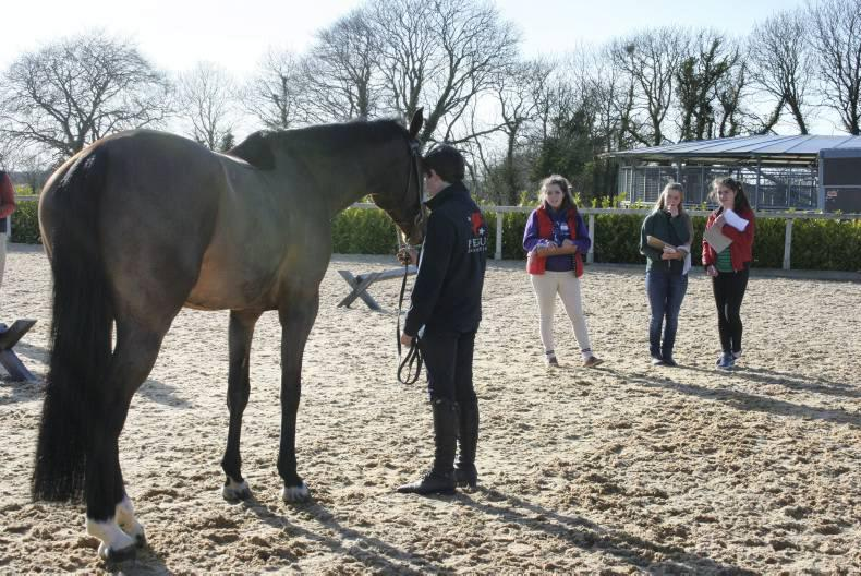 Army visit next on Young Breeders agenda