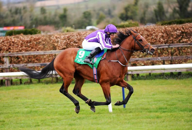 FRENCH PREVIEW:  Gurkha out for Guineas glory