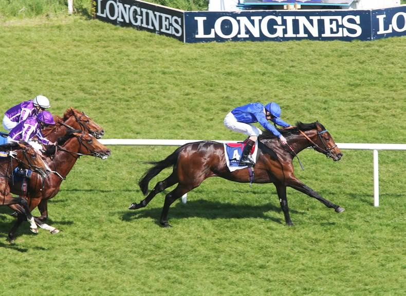 LEOPARDSTOWN SUNDAY: Moonlight shows some Derby Magic