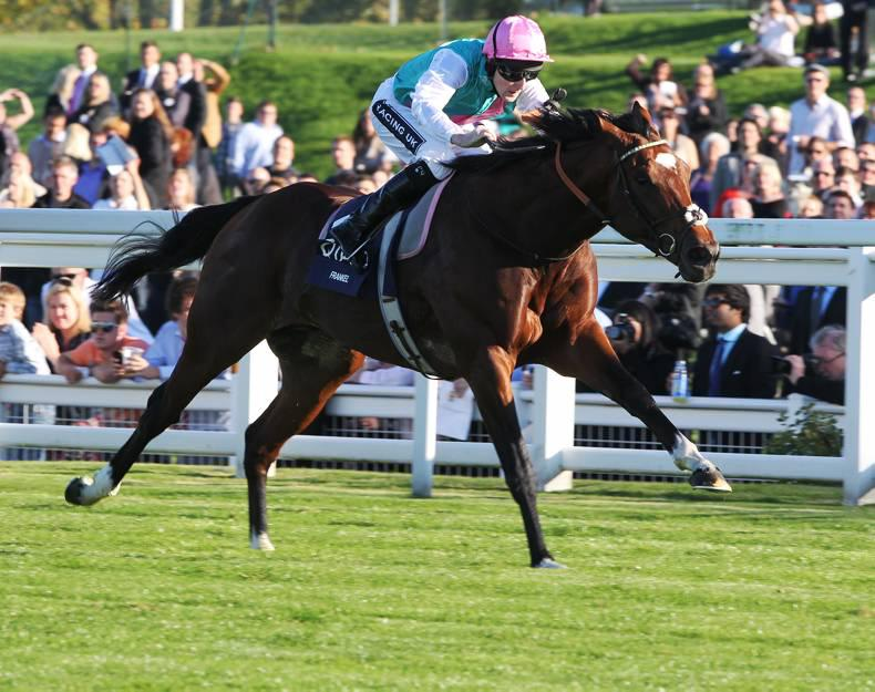 FRESHMAN SIRES: Delegator, Frankel and Sepoy off the mark