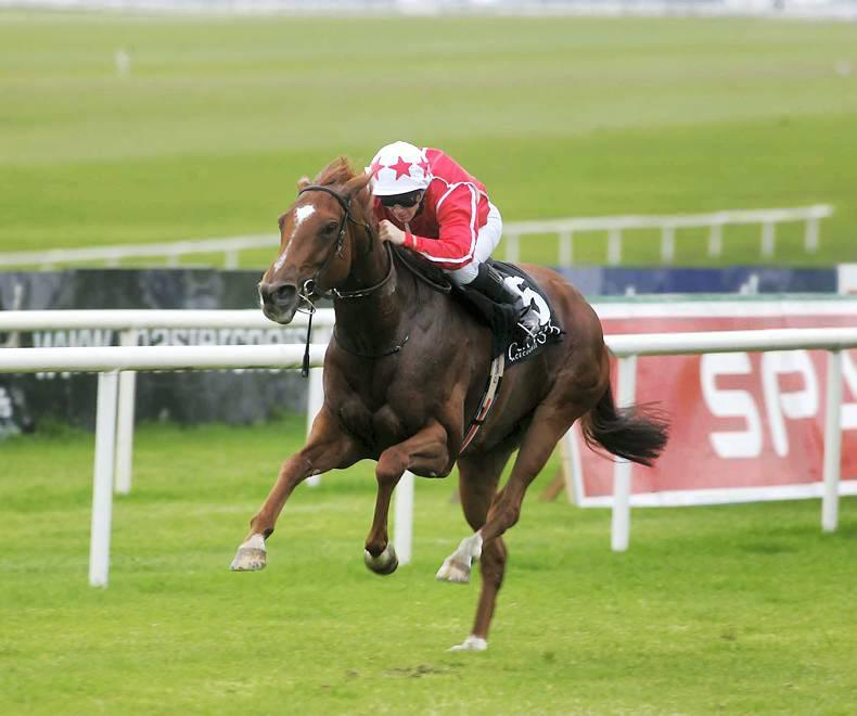 PEDIGREE ANALYSIS: Unbeaten Le Havre filly has star potential