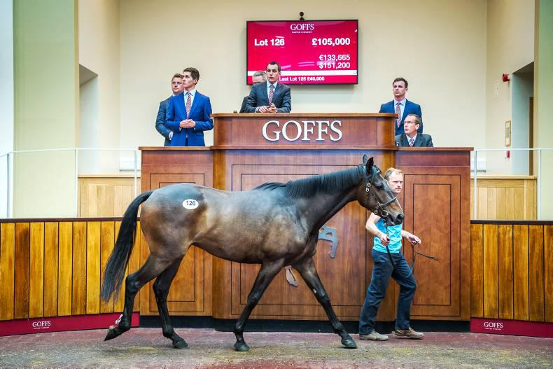 Strong results on first day of Goffs UK Spring Sale